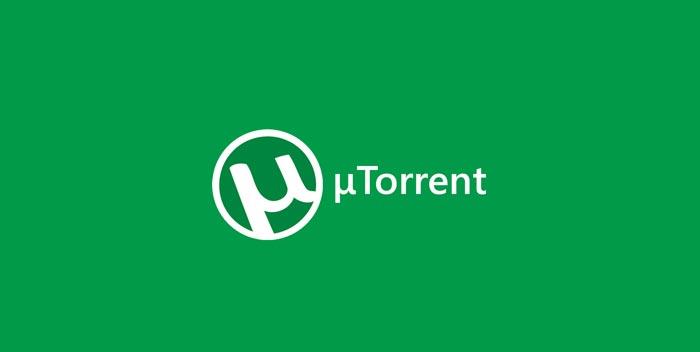 Scaricare con i Torrent