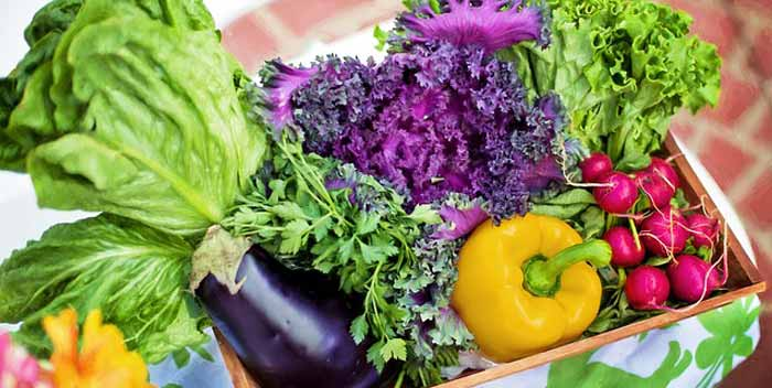 Quali alimenti usare per il compostaggio