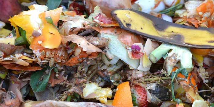 Come si fa il compostaggio