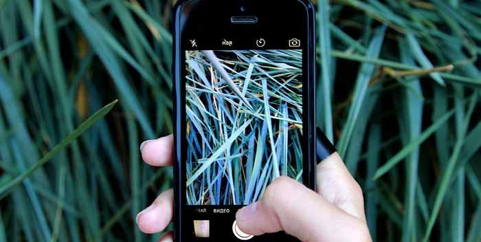 Dove acquistare cellulari cinesi